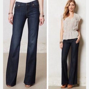 Anthopologie Level 99 Newport Wide Leg Flare Jeans